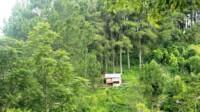 Panorama Tabek Patah merupakan salah satu destinasi wisata di Tanah Datar Sumbar (M Rafi / Mattanews.co)