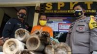 ADS ditangkap karena telah mencuri madu klenceng di Kabupaten Blitar Jawa Timur (Jatim (Robby / Mattanews.co)