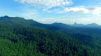 Pesona wisata alam di Desa Masupa Ria Kabupaten Kapuas Kalteng (Angga / Mattanews.co)