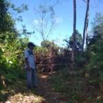 Jalan Usaha Tani (JUT) di Desa Sungai Ulas Merangin Jambi ditutup pemilik tanah (Yulisman / Mattanews.co)