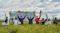 Bupati Banyuasin Sumsel Askolani Jasi panen padi IP.100 (Dok. Humas Pemkab Banyuasin / Mattanews.co)