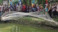 Bupati Merangin saat panen ikan nila di kolam komunitas pembudidaya ikan di Kabupaten Merangin Jambi (Dok. Humas Pemkab Merangin / Mattanews.co)