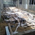 Kondisi di dalam ruangan faskes Dinkes Kapuas yang mangkrak (Angga / Mattanews.co)