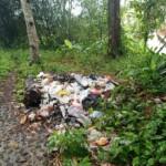 Situs sejarah Lutung Kasarung yang dipenuhi gundukan sampah.