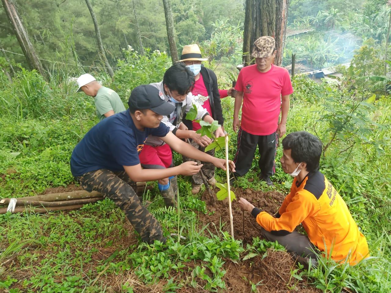 Anggota DPRD Ciamis menanam pohon di Gunung Bangka Sindangkasih Ciamis Jabar (Kayan / Mattanews.co)
