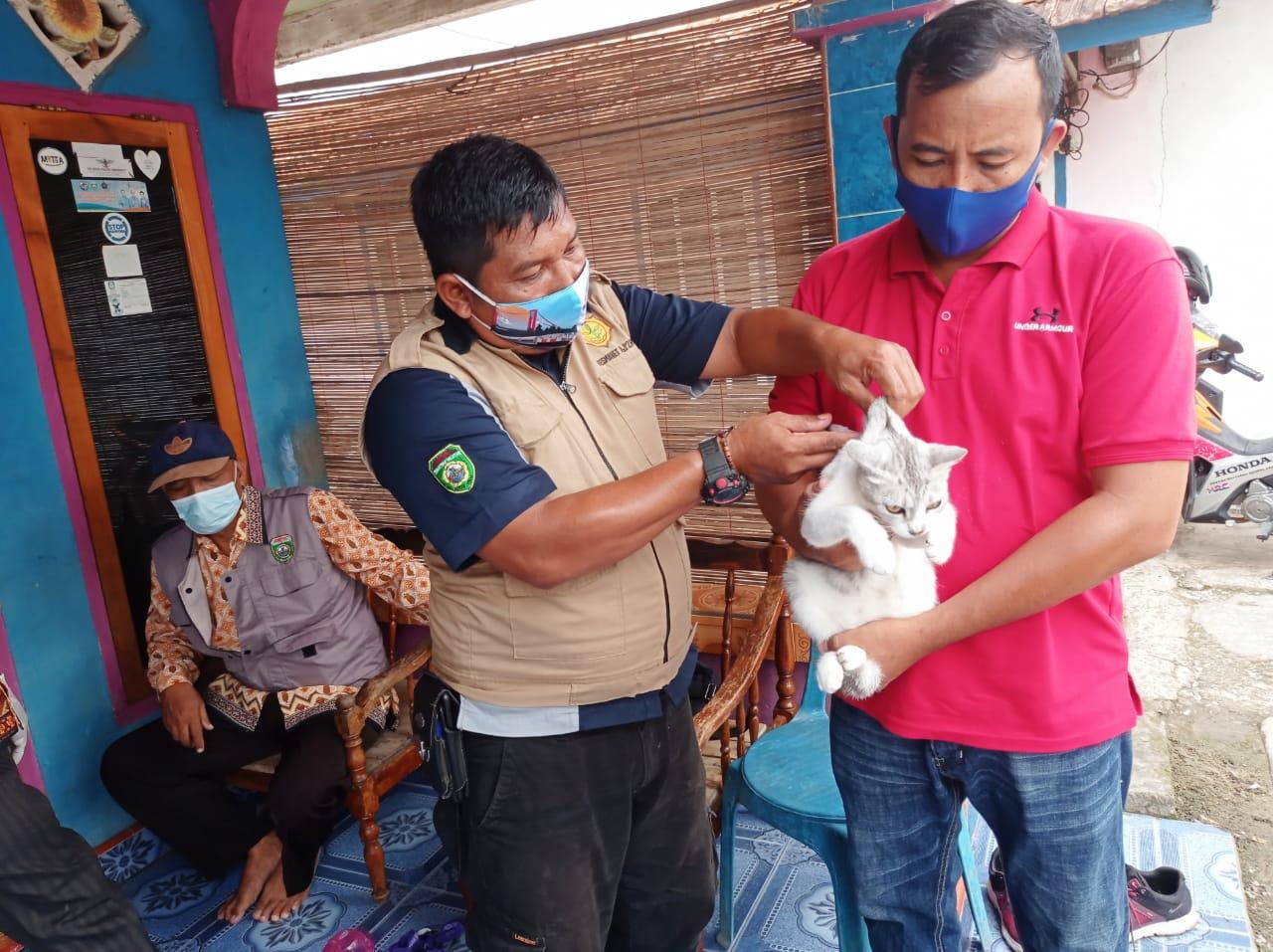 Program rutin Dinas Pertanian Kota Prabumulih melaui Bidang Peternakan dan Kesehatan Hewan,melakukan penyuntikan vaksin anti rabies terhadap hewan peliharaan seperti Kucing, Anjing dan Monyet.