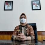 Kepala Dinas (Kadis) Perpustakaan Sumatera Selatan (Sumsel) Fitriana (Reza Fajri / Mattanews.co)