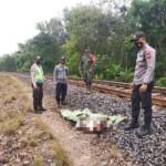 Tim Polres OKU Sumsel mengevakuasi jasad pria tanpa identitas di jalur rel kereta api di OKU Sumsel (Satrio / Mattanews.co)