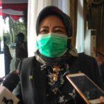 Kepala Dinas Kesehatan Sumsel, Lesty Nurainy